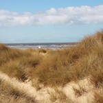 Ainsdale Birdwatching Society Evening Events 'Not Dogging'